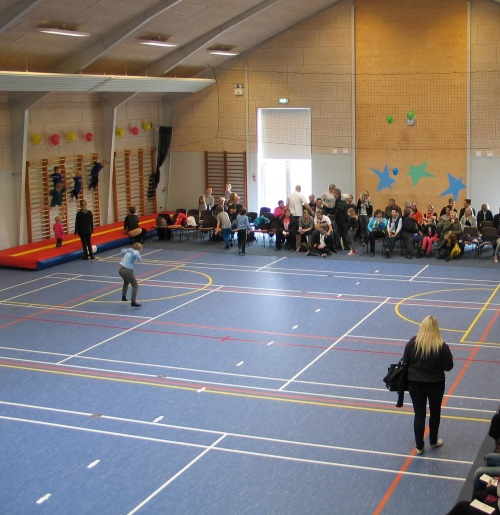 Badmintonbane 1
